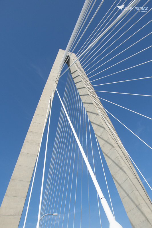 The Ravenel Bridge supports