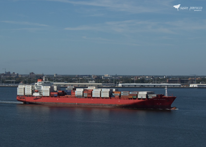 View of a container cargo ship, taken from the Ravenel Bridge