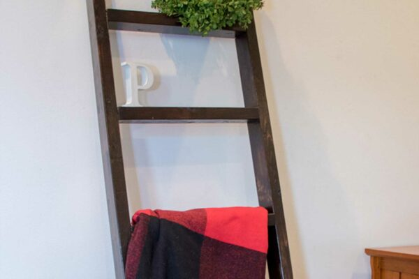 woodworking blanket ladder